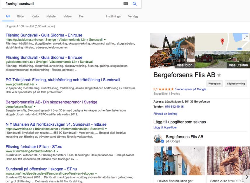 Desktopvy_googlemicro-bergeforsensflis.se_