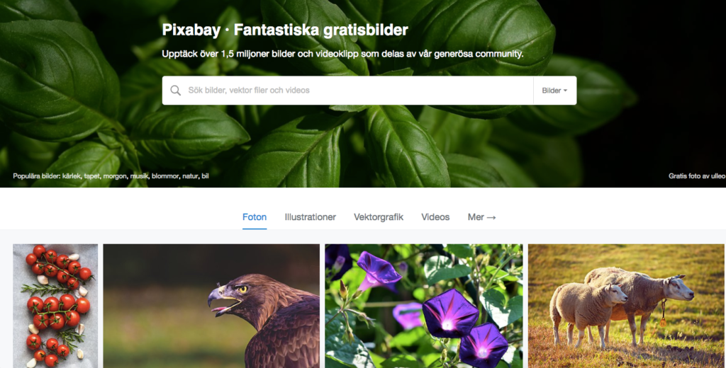 Pixabay gratis bilder
